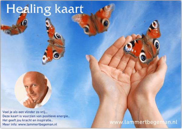Lammert-Begeman-healing-kaart-vlinder
